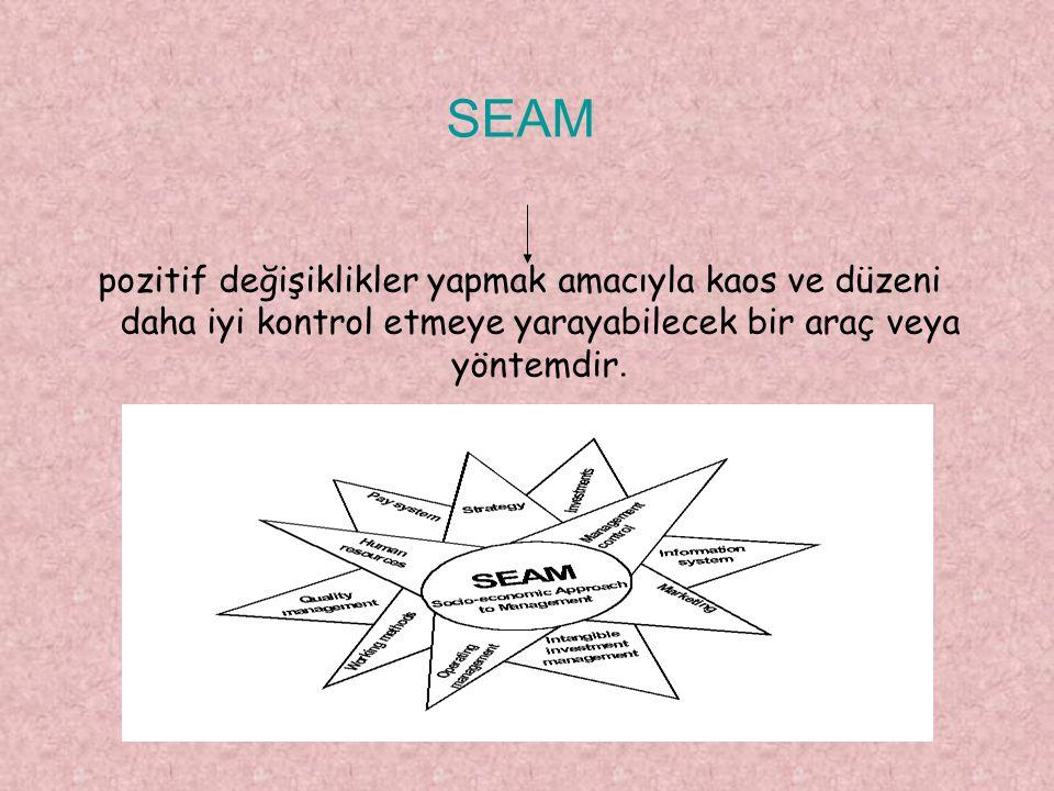 SEAM pozitif değişiklikler yapmak amacıyla kaos ve düzeni daha iyi kontrol etmeye yarayabilecek bir araç veya yöntemdir.