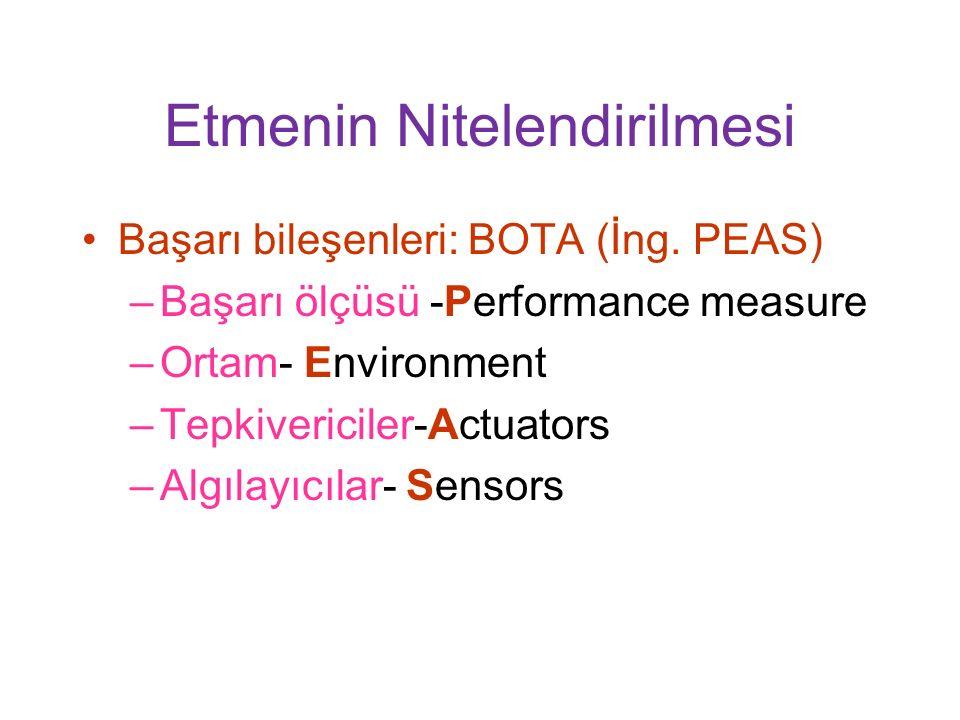 Etmenin Nitelendirilmesi Başarı bileşenleri: BOTA (İng.