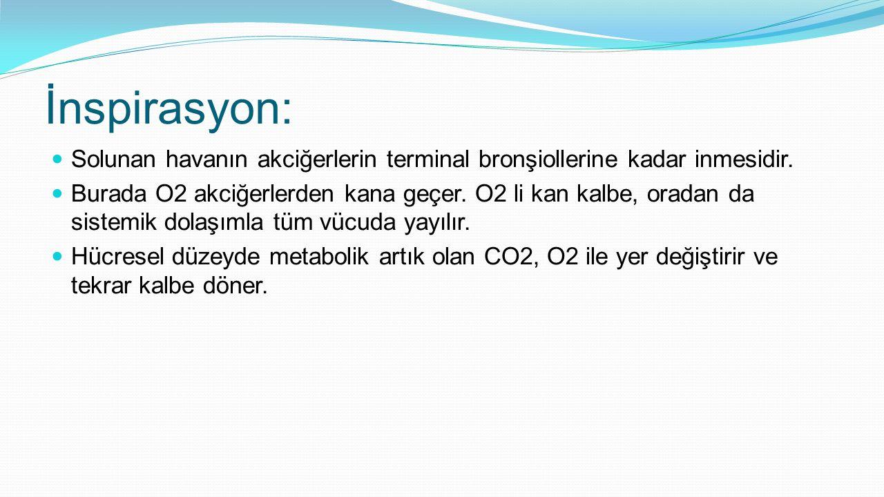 İnspirasyon: Solunan havanın akciğerlerin terminal bronşiollerine kadar inmesidir. Burada O2 akciğerlerden kana geçer. O2 li kan kalbe, oradan da sist