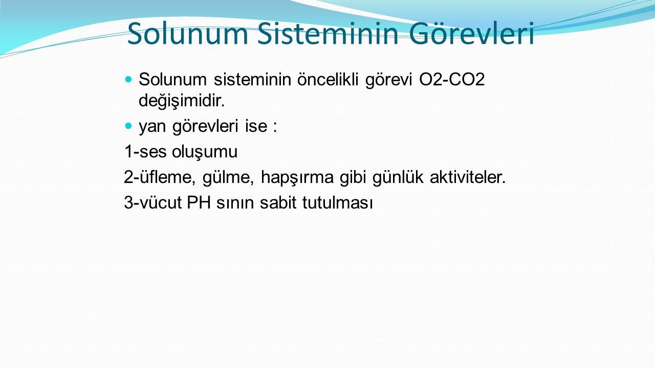 Solunum Sisteminin Görevleri Solunum sisteminin öncelikli görevi O2-CO2 değişimidir. yan görevleri ise : 1-ses oluşumu 2-üfleme, gülme, hapşırma gibi