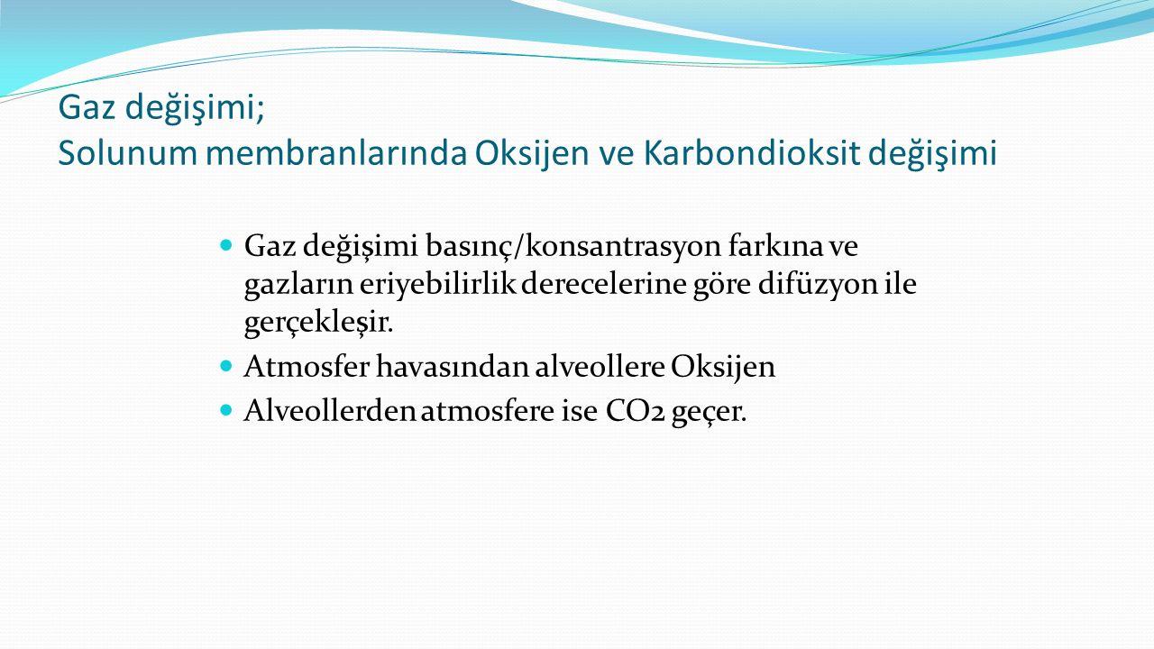 Gaz değişimi; Solunum membranlarında Oksijen ve Karbondioksit değişimi Gaz değişimi basınç/konsantrasyon farkına ve gazların eriyebilirlik derecelerin