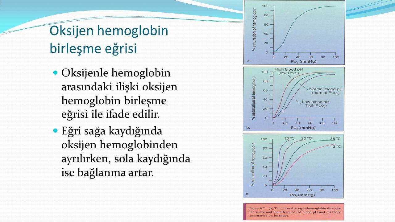 Oksijen hemoglobin birleşme eğrisi Oksijenle hemoglobin arasındaki ilişki oksijen hemoglobin birleşme eğrisi ile ifade edilir. Eğri sağa kaydığında ok