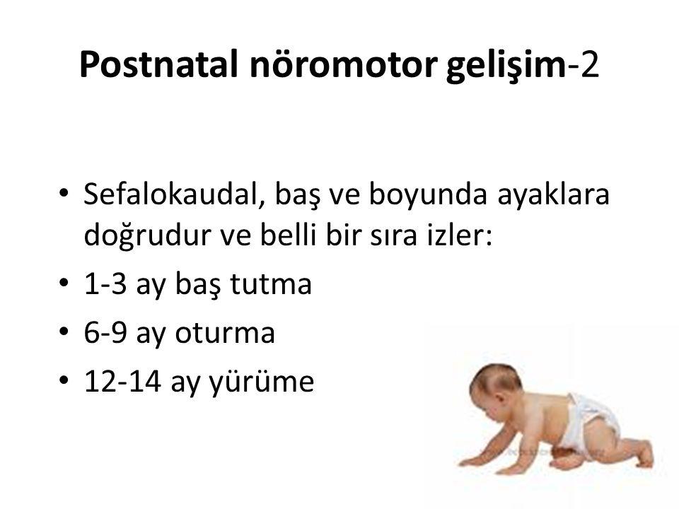 Postnatal nöromotor gelişim-2 Sefalokaudal, baş ve boyunda ayaklara doğrudur ve belli bir sıra izler: 1-3 ay baş tutma 6-9 ay oturma 12-14 ay yürüme 6