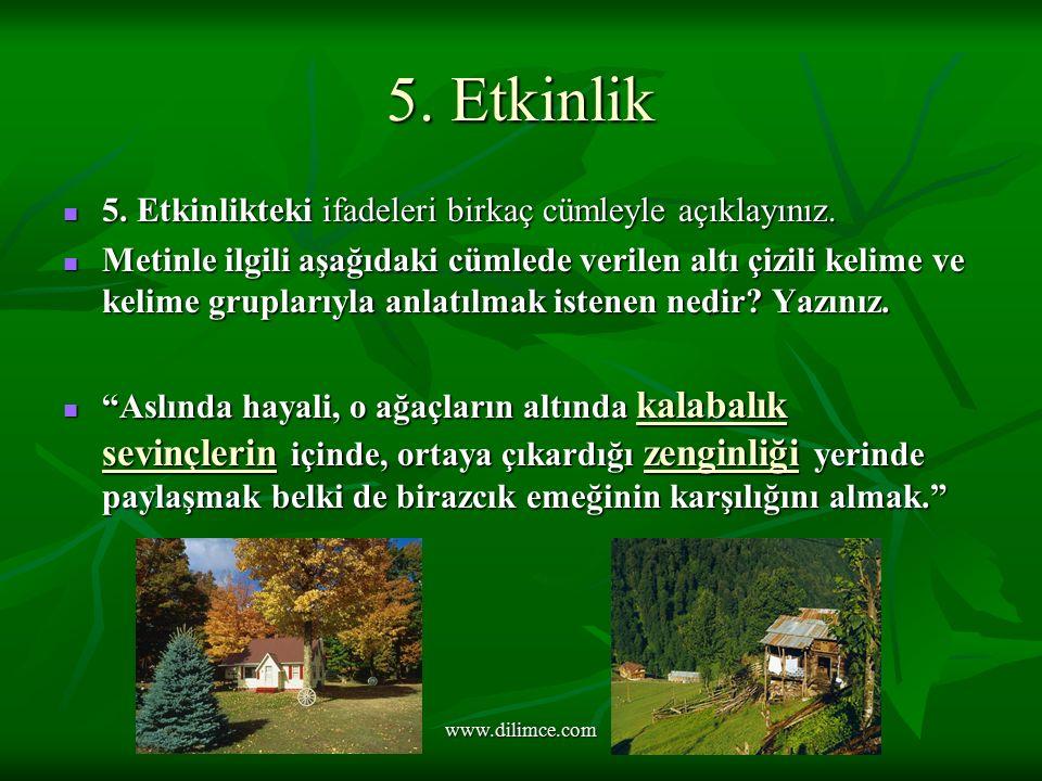www.dilimce.com 5.Etkinlik 5. Etkinlikteki ifadeleri birkaç cümleyle açıklayınız.