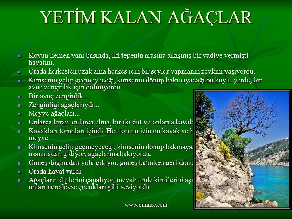www.dilimce.com YETİM KALAN AĞAÇLAR Köyün hemen yanı başında, iki tepenin arasına sıkışmış bir vadiye vermişti hayatını.