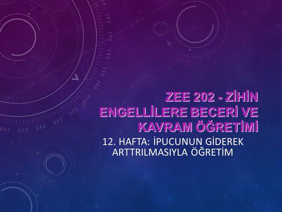 ZEE 202 - ZİHİN ENGELLİLERE BECERİ VE KAVRAM ÖĞRETİMİ 12.
