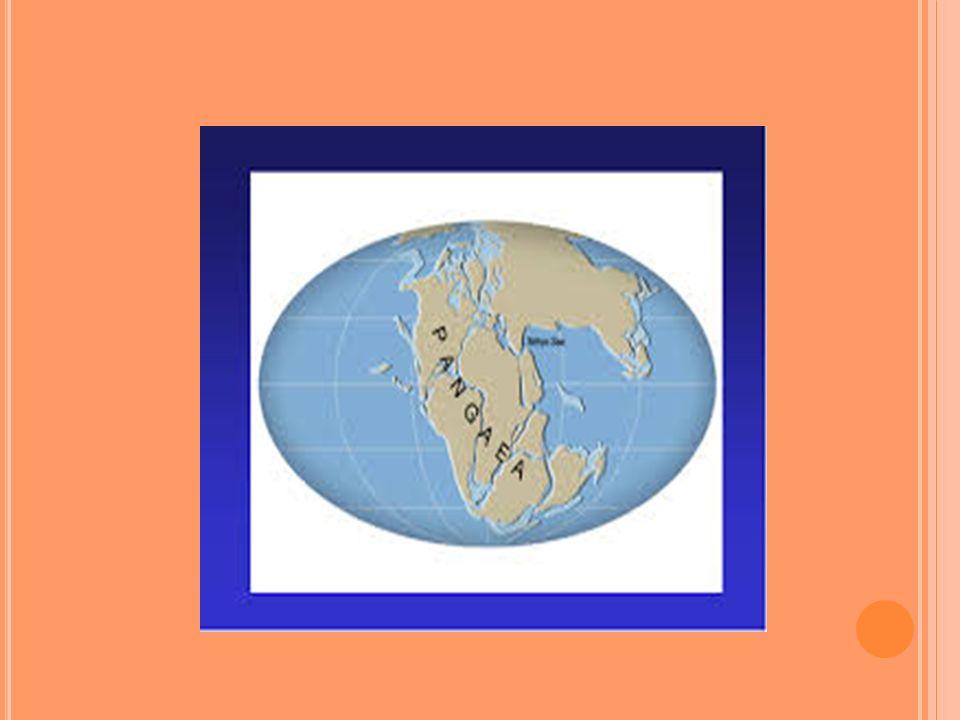 KITALARIN JEOLOJİK DEVİRLERDEKİ GÖRÜNÜMÜ Kıtalar yılda 1 – 2 cm gibi çok yavaş bir hızla hareket etmektedir.
