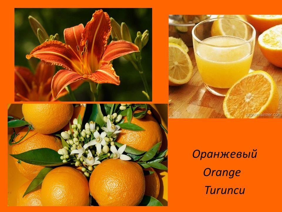 Оранжевый Orange Turuncu