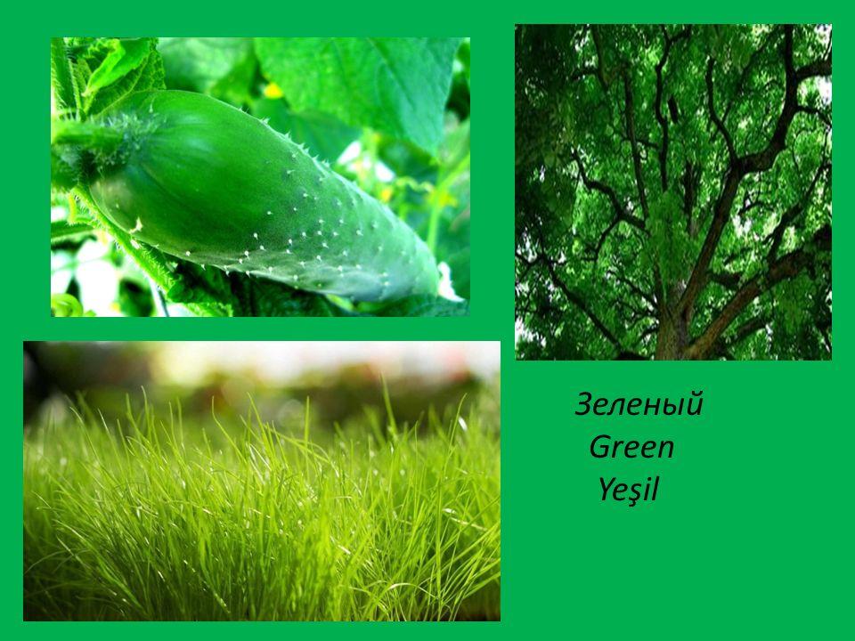 Зеленый Green Yeşil