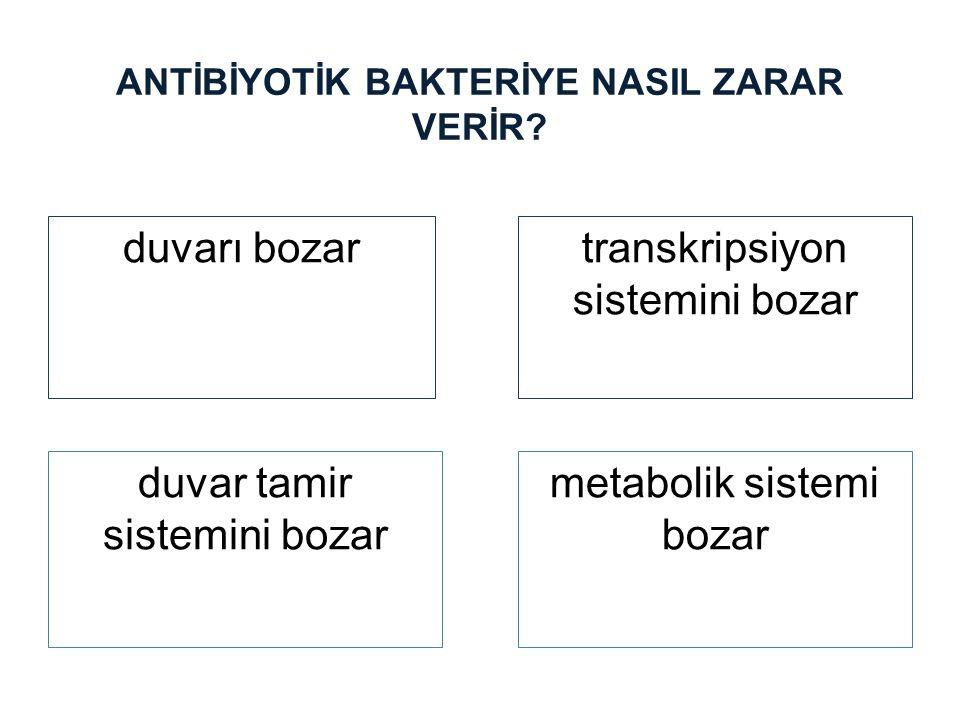 ANTİBİYOTİK BAKTERİYE NASIL ZARAR VERİR? duvarı bozartranskripsiyon sistemini bozar duvar tamir sistemini bozar metabolik sistemi bozar