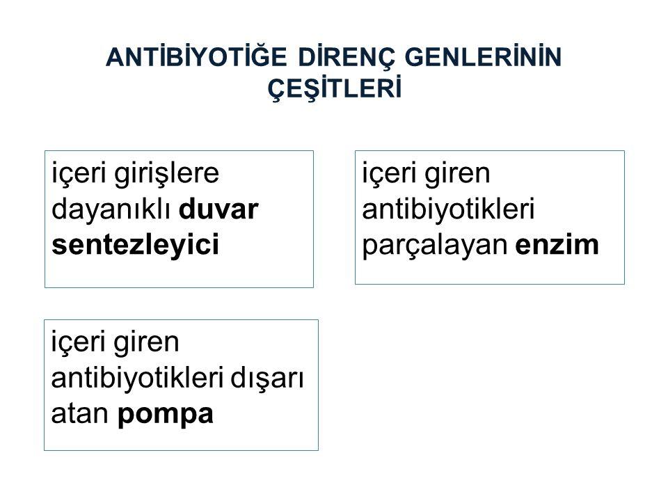 ANTİBİYOTİĞE DİRENÇ GENLERİNİN ÇEŞİTLERİ içeri giren antibiyotikleri parçalayan enzim içeri girişlere dayanıklı duvar sentezleyici içeri giren antibiy