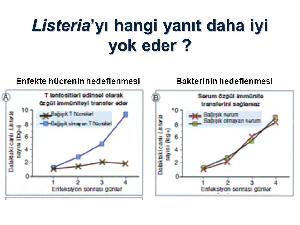 Listeria'yı hangi yanıt daha iyi yok eder ? Enfekte hücrenin hedeflenmesi Bakterinin hedeflenmesi