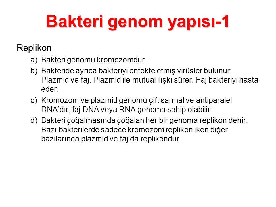 Replikon a)Bakteri genomu kromozomdur b)Bakteride ayrıca bakteriyi enfekte etmiş virüsler bulunur: Plazmid ve faj. Plazmid ile mutual ilişki sürer. Fa