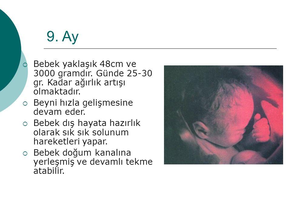 9. Ay  Bebek yaklaşık 48cm ve 3000 gramdır. Günde 25-30 gr. Kadar ağırlık artışı olmaktadır.  Beyni hızla gelişmesine devam eder.  Bebek dış hayata