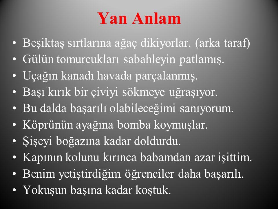 Yan Anlam Beşiktaş sırtlarına ağaç dikiyorlar.(arka taraf) Gülün tomurcukları sabahleyin patlamış.