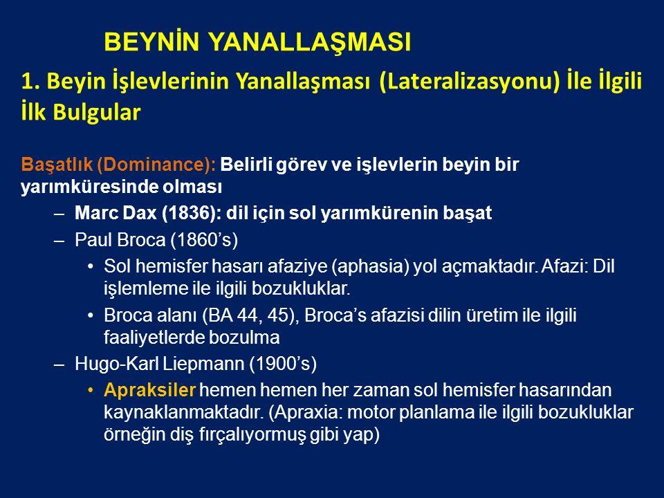 BEYNİN YANALLAŞMASI 1.