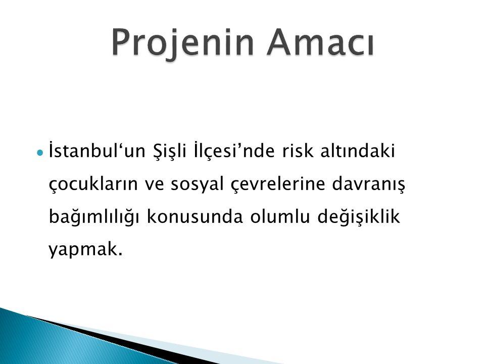 l İstanbul'un Şişli İlçesi'nde risk altındaki çocukların ve sosyal çevrelerine davranış bağımlılığı konusunda olumlu değişiklik yapmak.