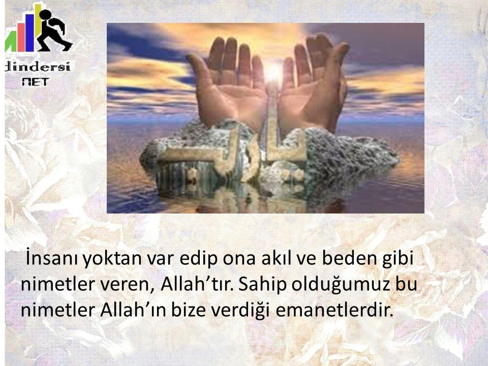 İnsanı yoktan var edip ona akıl ve beden gibi nimetler veren, Allah'tır.