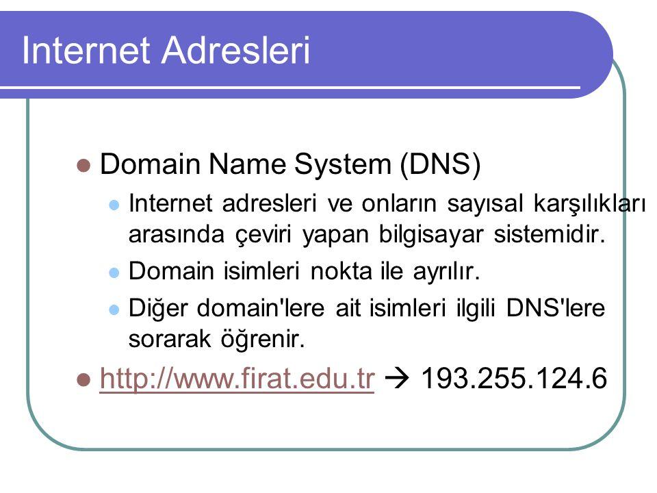 Internet Adresleri Domain Name System (DNS) Internet adresleri ve onların sayısal karşılıkları arasında çeviri yapan bilgisayar sistemidir.
