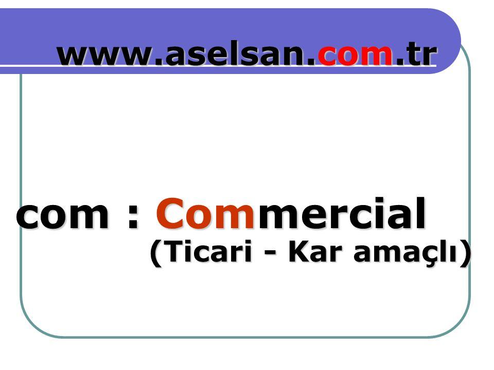 Commercial com : www.aselsan.com.tr (Ticari - Kar amaçlı) (Ticari - Kar amaçlı)