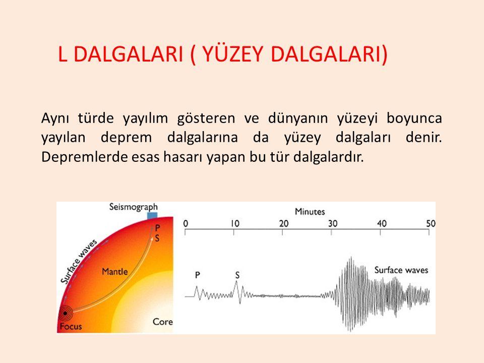 Aynı türde yayılım gösteren ve dünyanın yüzeyi boyunca yayılan deprem dalgalarına da yüzey dalgaları denir. Depremlerde esas hasarı yapan bu tür dalga