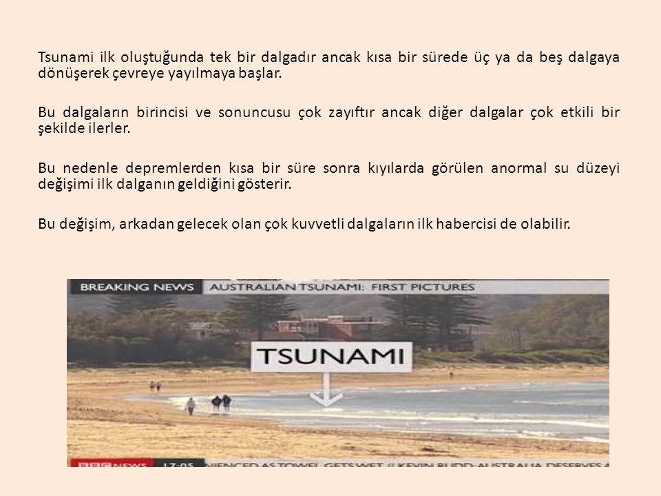 Tsunami ilk oluştuğunda tek bir dalgadır ancak kısa bir sürede üç ya da beş dalgaya dönüşerek çevreye yayılmaya başlar. Bu dalgaların birincisi ve son