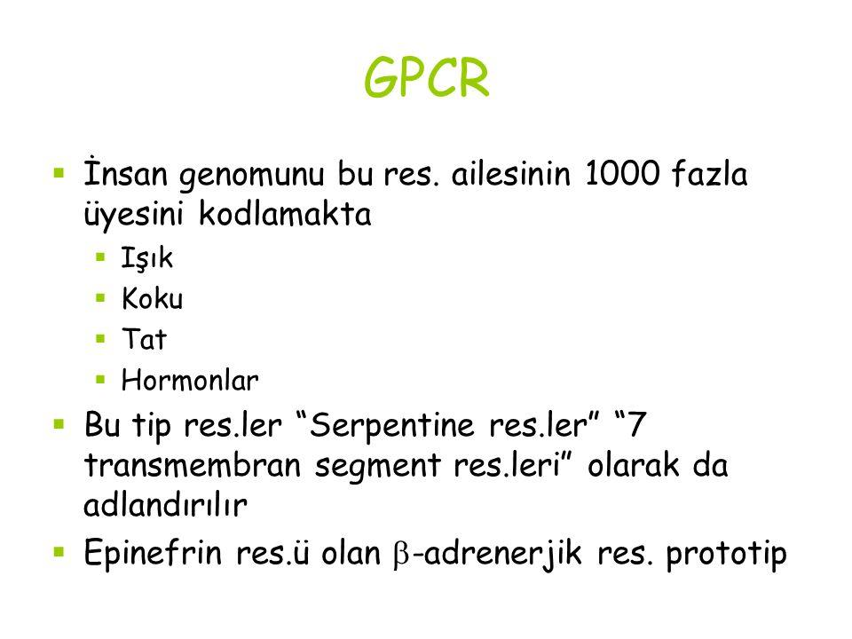 """GPCR  İnsan genomunu bu res. ailesinin 1000 fazla üyesini kodlamakta  Işık  Koku  Tat  Hormonlar  Bu tip res.ler """"Serpentine res.ler"""" """"7 transme"""