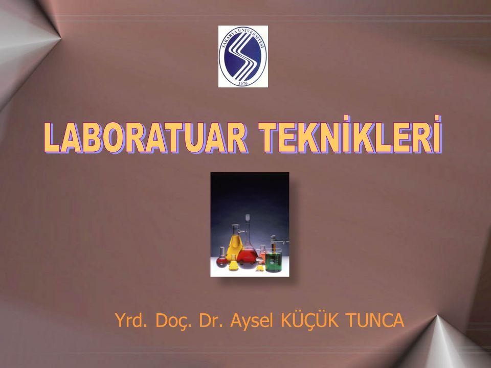 Yrd. Doç. Dr. Aysel KÜÇÜK TUNCA