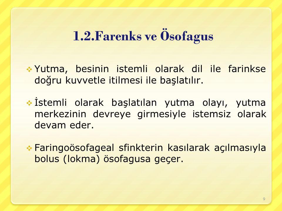 1.2.Farenks ve Ösofagus  Yutma, besinin istemli olarak dil ile farinkse doğru kuvvetle itilmesi ile başlatılır.  İstemli olarak başlatılan yutma ola