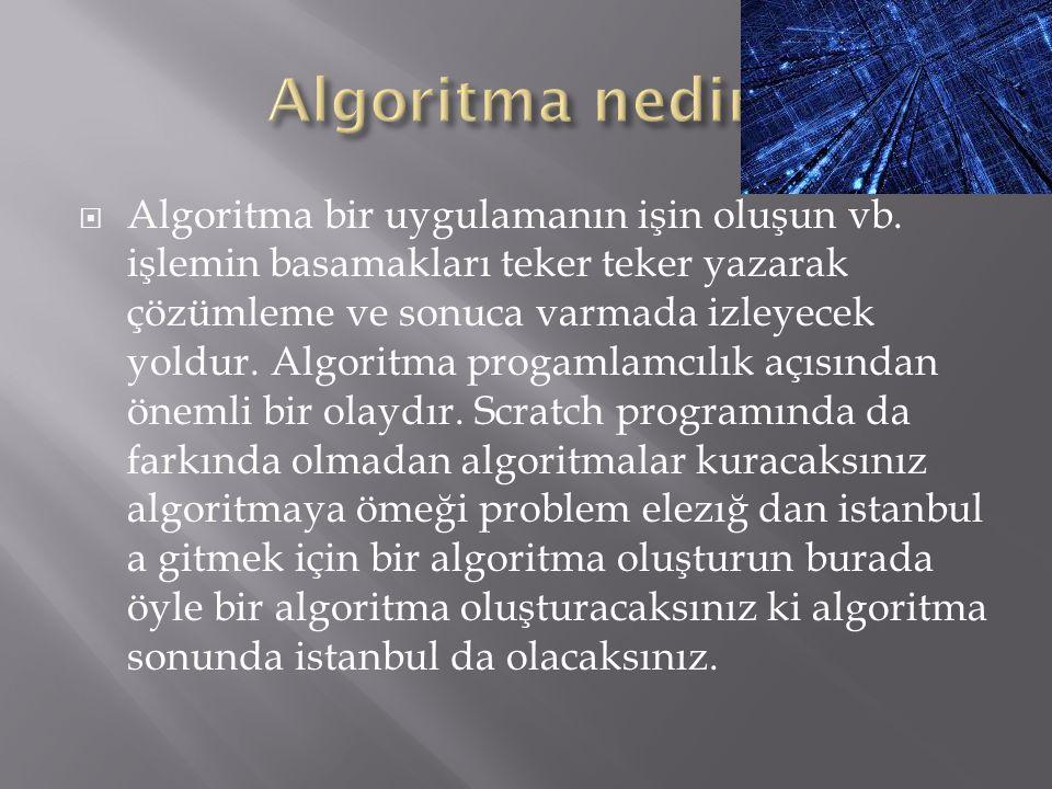  Algoritma bir uygulamanın işin oluşun vb.