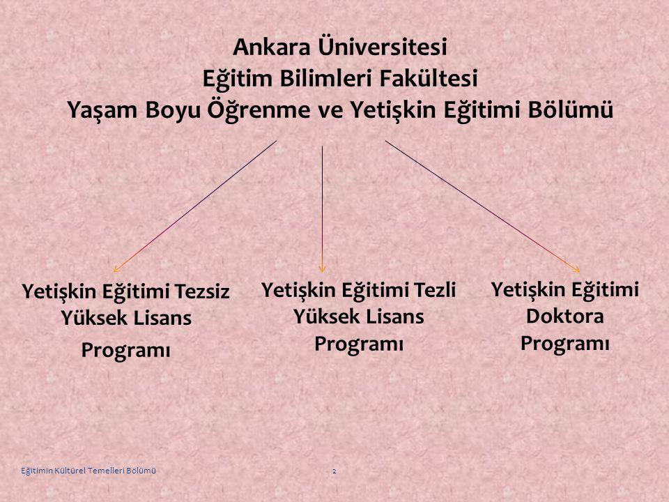 Yetişkin Eğitimi Tezsiz Yüksek Lisans Programı Ankara Üniversitesi Eğitim Bilimleri Fakültesi Yaşam Boyu Öğrenme ve Yetişkin Eğitimi Bölümü Yetişkin E