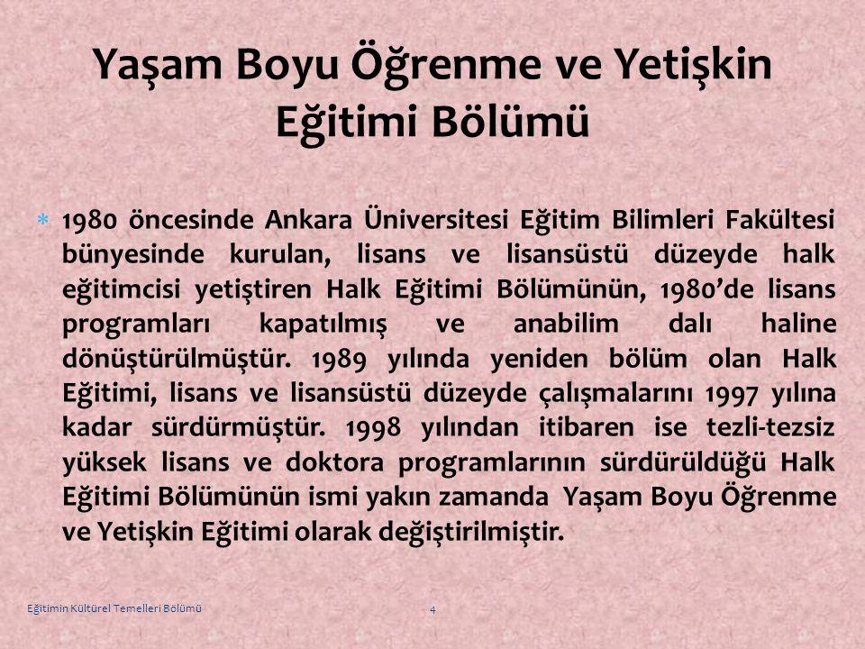  1980 öncesinde Ankara Üniversitesi Eğitim Bilimleri Fakültesi bünyesinde kurulan, lisans ve lisansüstü düzeyde halk eğitimcisi yetiştiren Halk Eğiti