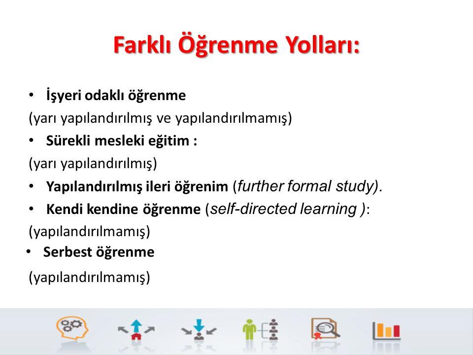 Farklı Öğrenme Yolları: İşyeri odaklı öğrenme (yarı yapılandırılmış ve yapılandırılmamış) Sürekli mesleki eğitim : (yarı yapılandırılmış) Yapılandırılmış ileri öğrenim ( further formal study).
