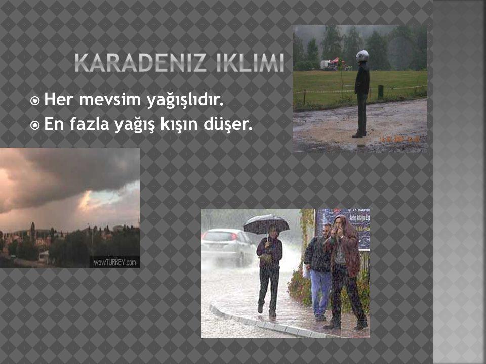  Her mevsim yağışlıdır.  En fazla yağış kışın düşer.