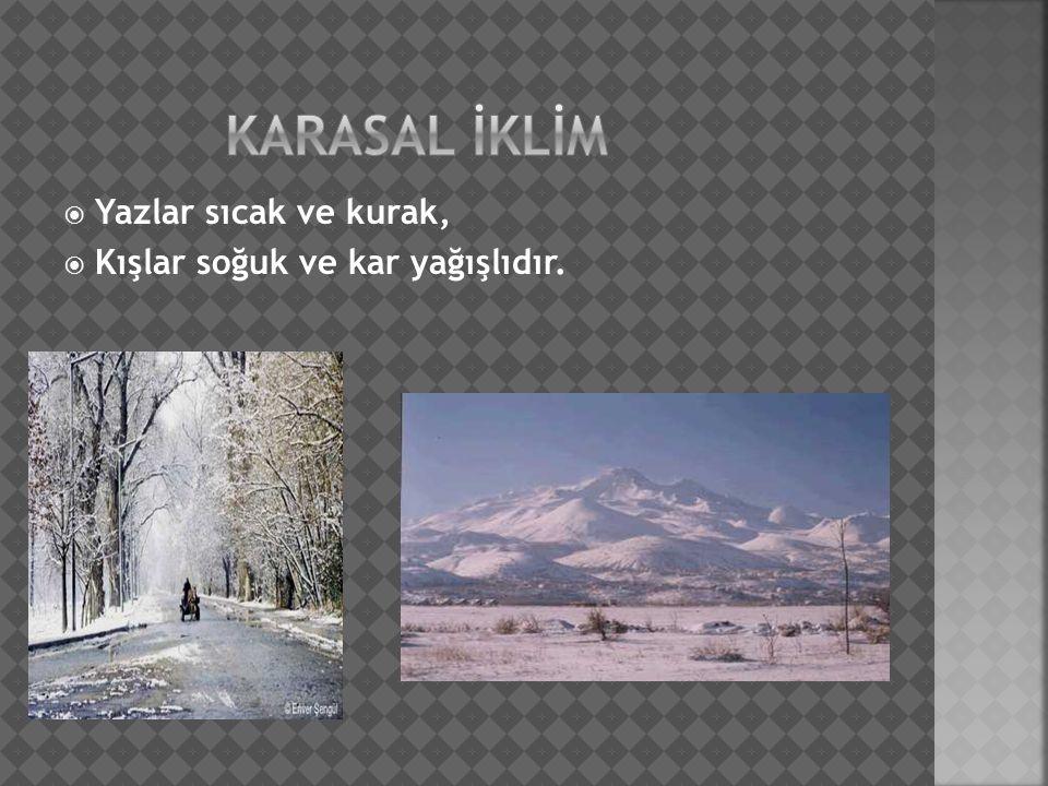  Yazlar sıcak ve kurak,  Kışlar soğuk ve kar yağışlıdır.