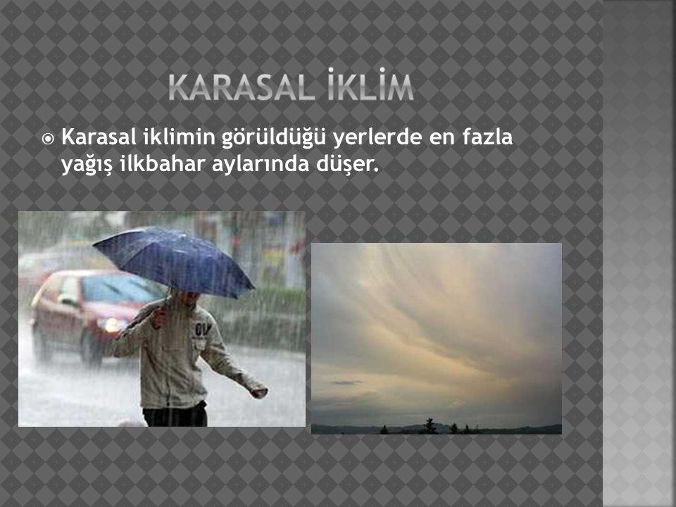  Karasal iklimin görüldüğü yerlerde en fazla yağış ilkbahar aylarında düşer.