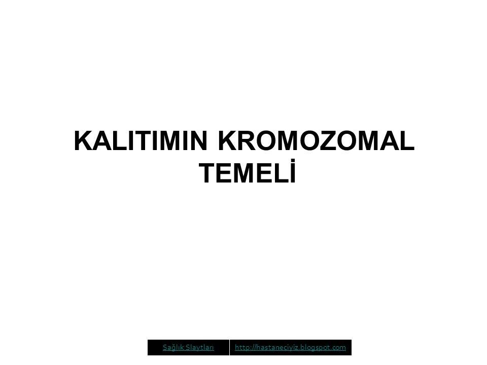 KALITIMIN KROMOZOMAL TEMELİ Sağlık Slaytlarıhttp://hastaneciyiz.blogspot.com