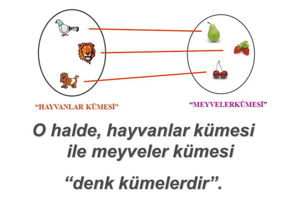 MEYVELERKÜMESİ HAYVANLAR KÜMESİ 1.Hayvanlar 1.Hayvanlar kümesi ile meyveler kümesinin eleman sayıları birbirine eşittir.