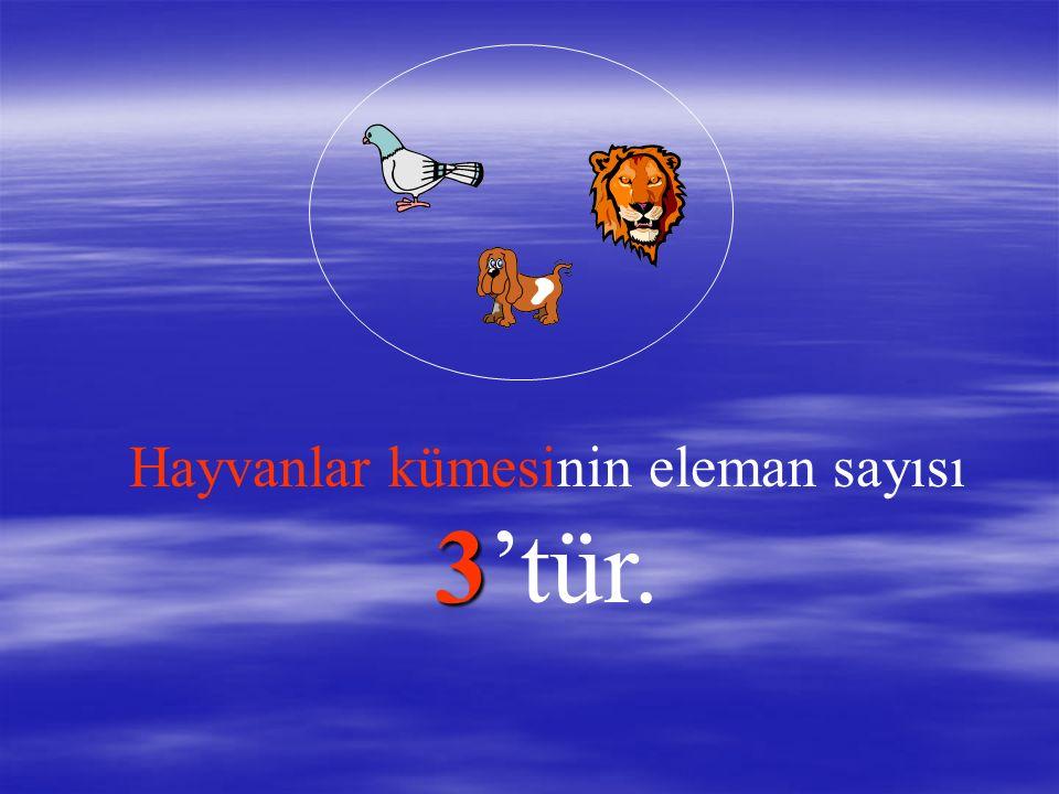 Hayvanlar kümesinin kaç elemanı var? Hayvanlar kümesinin 3 elemanı var. Kuş Kuş, köpek köpek ve aslan aslan...