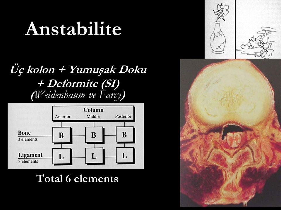 Anstabilite Üç kolon + Yumuşak Doku + Deformite (SI) (Weidenbaum ve Farcy) Total 6 elements