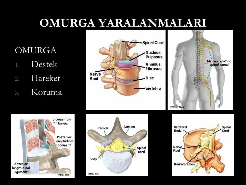 Tanı Radyolojik Değerlendirme Kemik yapı Kemik yapı Yumuşak dokular Yumuşak dokular Disk Disk Posterior ligament kompleksi Posterior ligament kompleksi