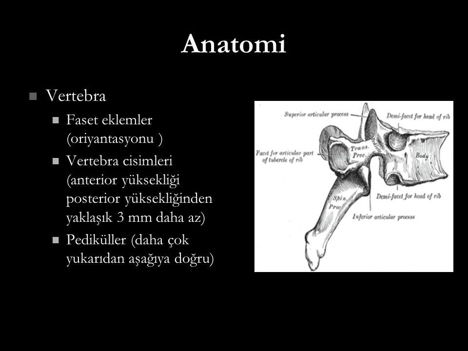 Anatomi Vertebra Vertebra Faset eklemler (oriyantasyonu ) Faset eklemler (oriyantasyonu ) Vertebra cisimleri (anterior yüksekliği posterior yüksekliği