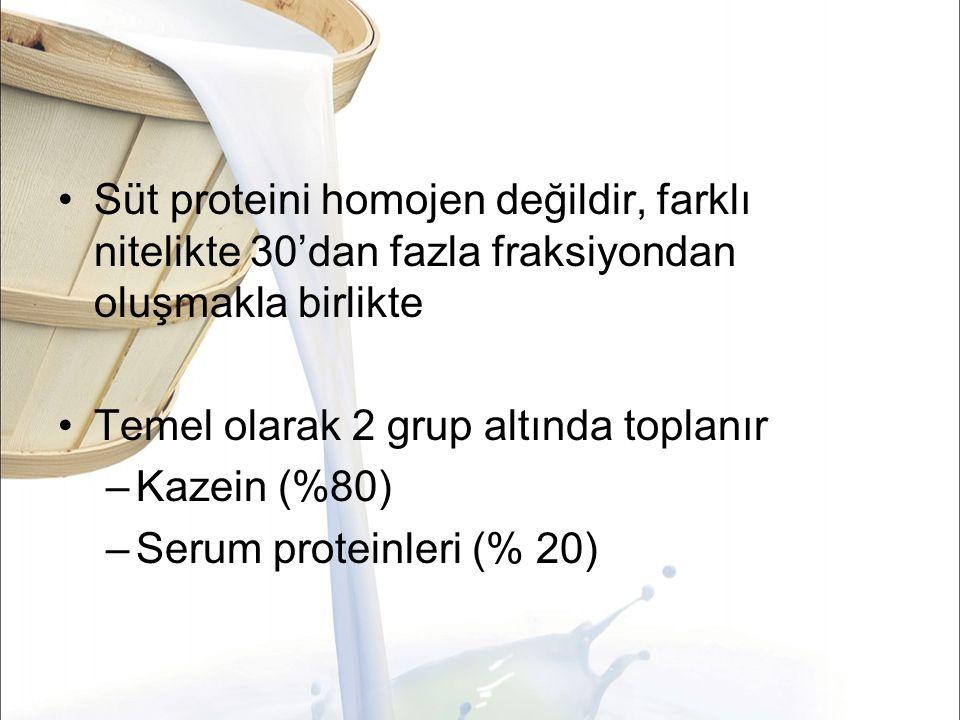 Süt proteini homojen değildir, farklı nitelikte 30'dan fazla fraksiyondan oluşmakla birlikte Temel olarak 2 grup altında toplanır –Kazein (%80) –Serum proteinleri (% 20)