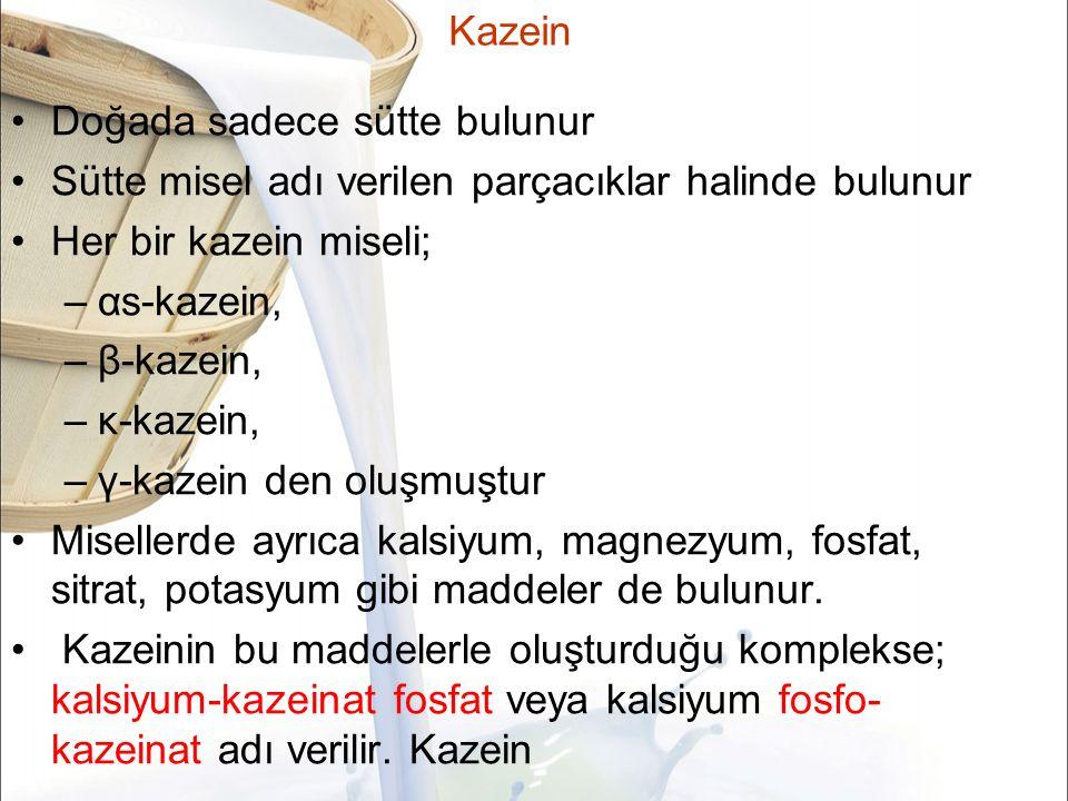 Kazein Doğada sadece sütte bulunur Sütte misel adı verilen parçacıklar halinde bulunur Her bir kazein miseli; –αs-kazein, –β-kazein, –κ-kazein, –γ-kazein den oluşmuştur Misellerde ayrıca kalsiyum, magnezyum, fosfat, sitrat, potasyum gibi maddeler de bulunur.
