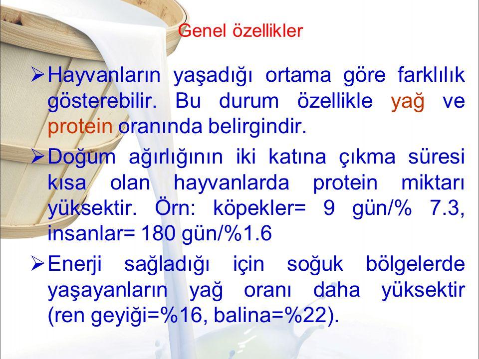 Koyun sütü  protein yağ ve mineral maddeler açısından zengin  Doğal asitliği daha yüksek  kendine özgü ağır bir tadı ve kokusu vardır.