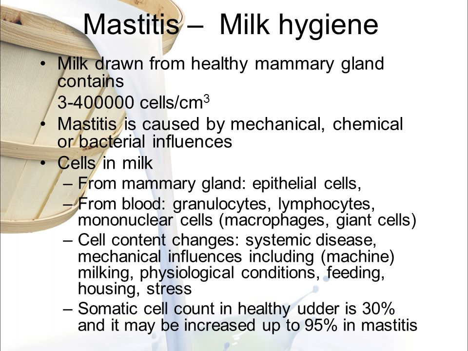 Mastitis – Milk hygiene Milk drawn from healthy mammary gland contains 3-400000 cells/cm 3 Mastitis is caused by mechanical, chemical or bacterial inf