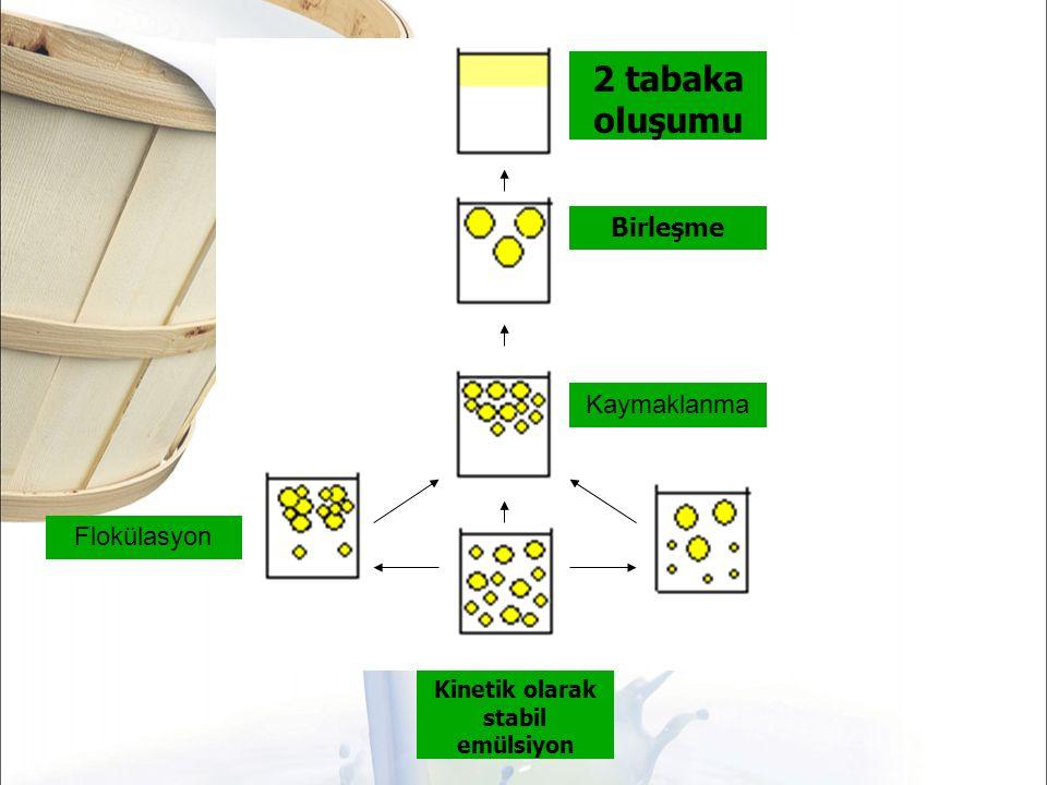 Kaymaklanma Birleşme 2 tabaka oluşumu Flokülasyon Kinetik olarak stabil emülsiyon