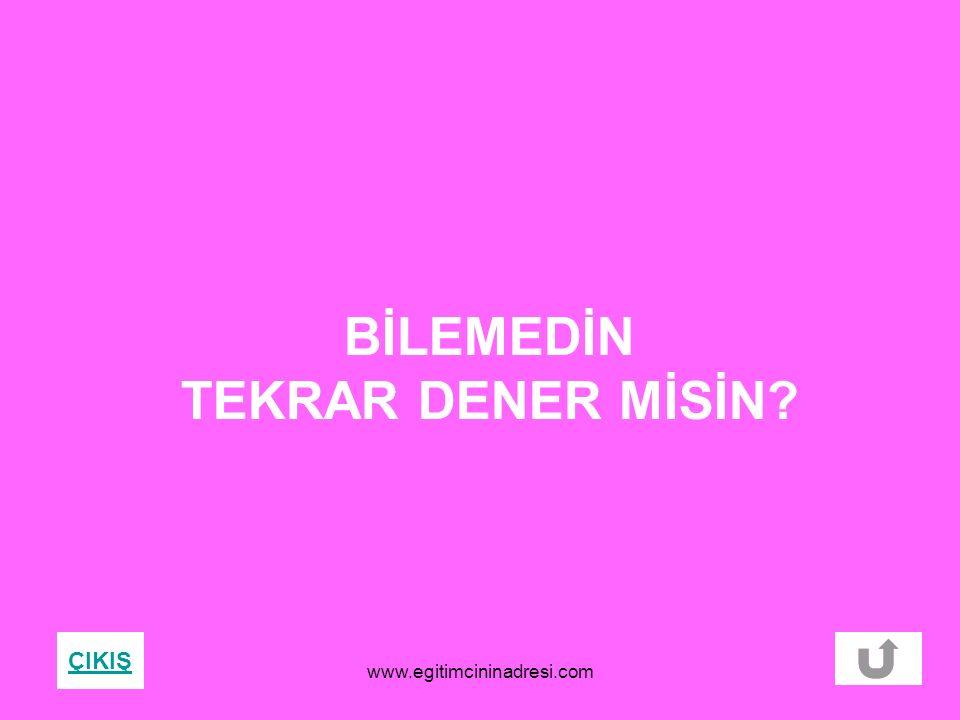 BİLEMEDİN TEKRAR DENER MİSİN? ÇIKIŞ www.egitimcininadresi.com