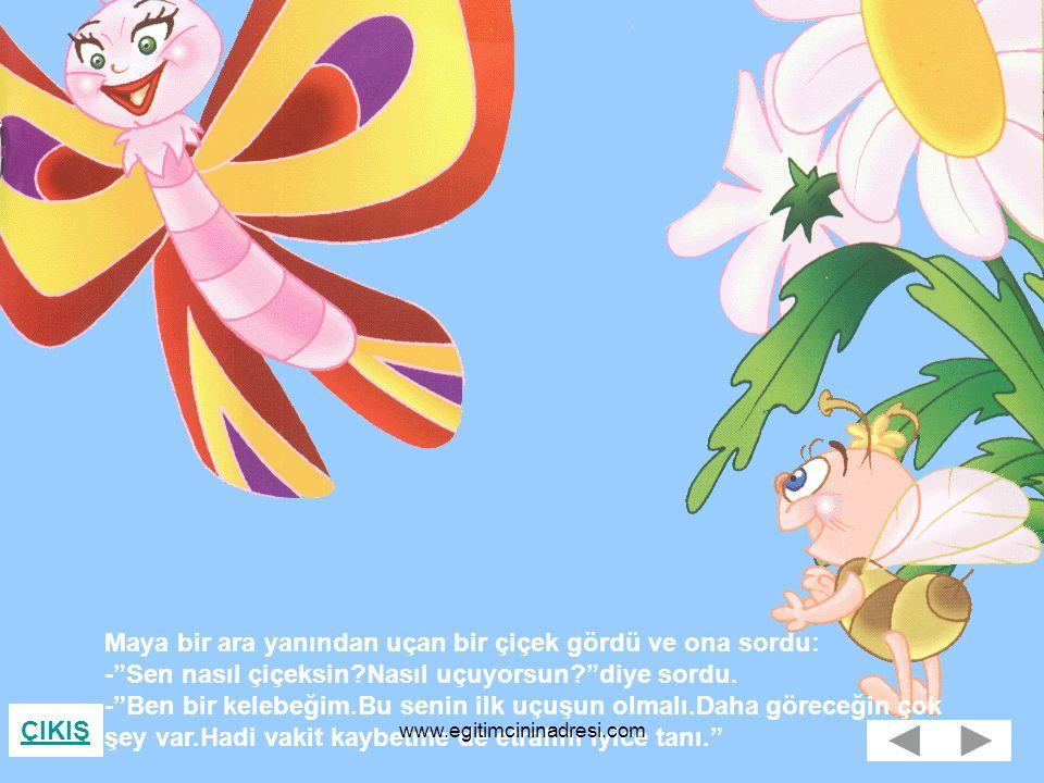 ÇIKIŞ Maya bir ara yanından uçan bir çiçek gördü ve ona sordu: - Sen nasıl çiçeksin?Nasıl uçuyorsun? diye sordu.