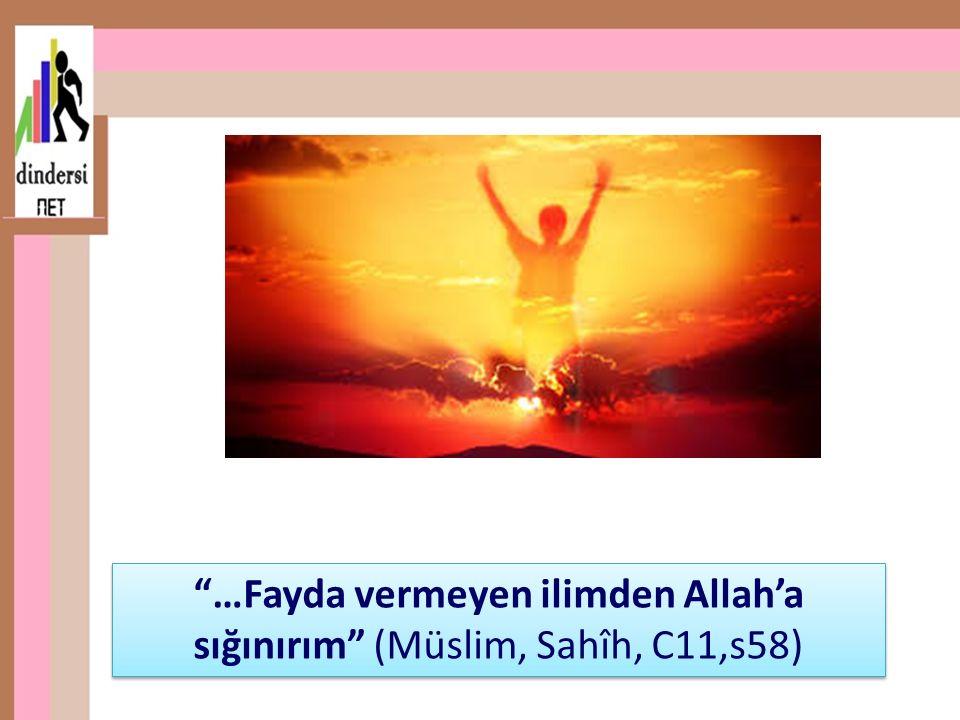…Fayda vermeyen ilimden Allah'a sığınırım (Müslim, Sahîh, C11,s58)